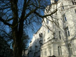 Kastanie als Fassadenschmeichler in der Hartungstraße