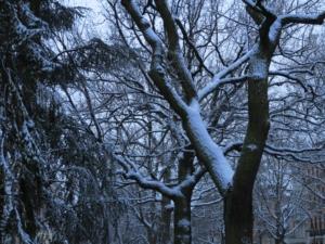 grindelviertel-heinrich-barth-strasse-winterzauber