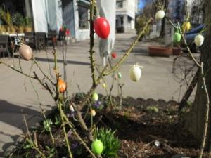 Frühling am Grindelhof / Rotherbaum