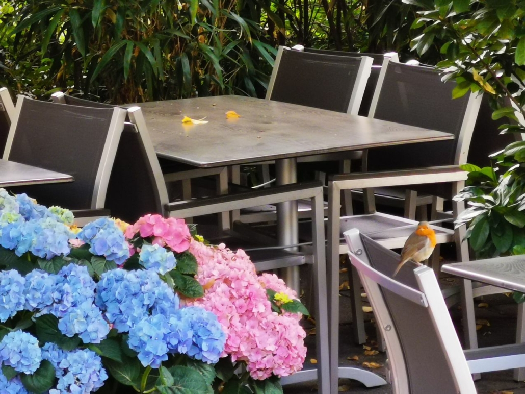 Platz zum Entspannen mit libanesischen und skandinavischen Köstlichkeiten, Heinrich-Barth-Straße/Rutschbahn